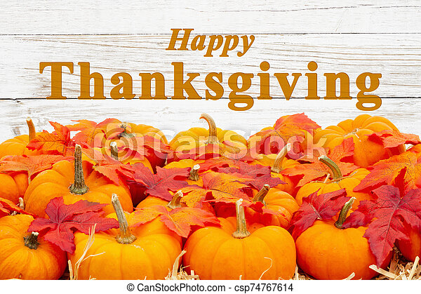 Happy Thanksgiving greeting with orange pumpkins with fall leaves - csp74767614