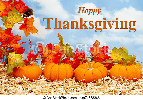 Happy Thanksgiving greeting with orange pumpkins with fall leaves on straw hay - csp74668366