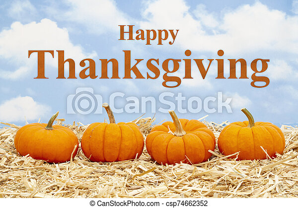 Happy Thanksgiving greeting with orange pumpkins on straw hay - csp74662352