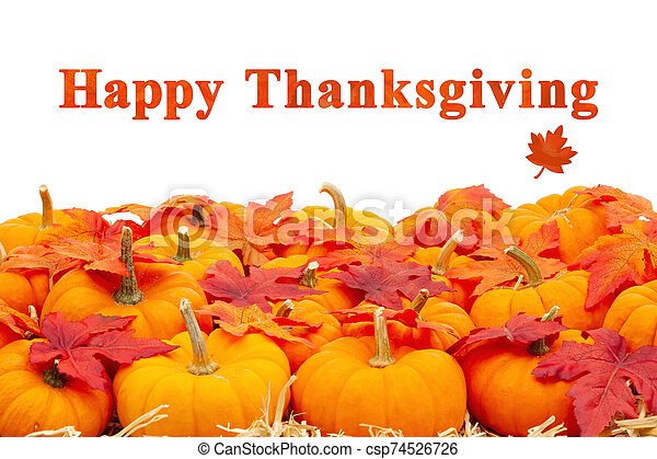 Happy Thanksgiving greeting with orange pumpkins with fall leaves - csp74526726