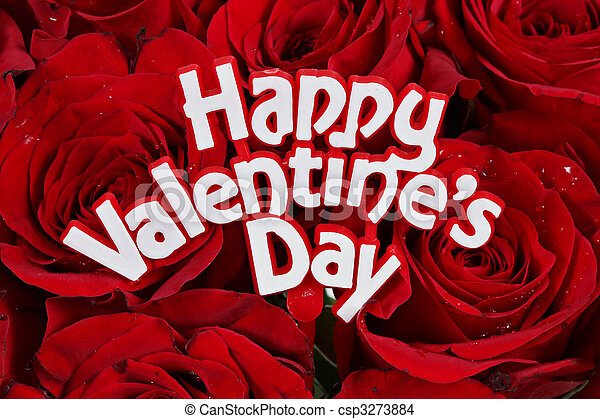 Elegant Happy Valentines Day On Roses Stock Photo