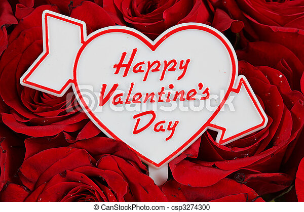 Happy Valentines Day sign on red roses - csp3274300