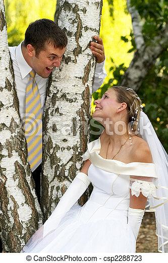 Happy wedding couple - csp2288723