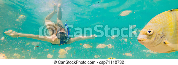 Happy young woman swimming underwater in the tropical ocean BANNER, LONG FORMAT - csp71118732