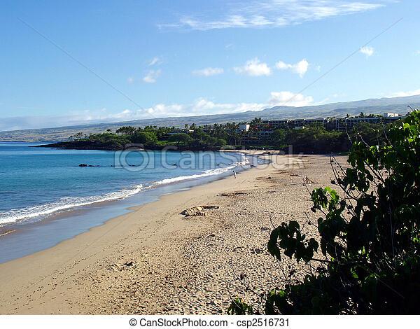 Hapuna Beach, Big Island, Hawaii - csp2516731