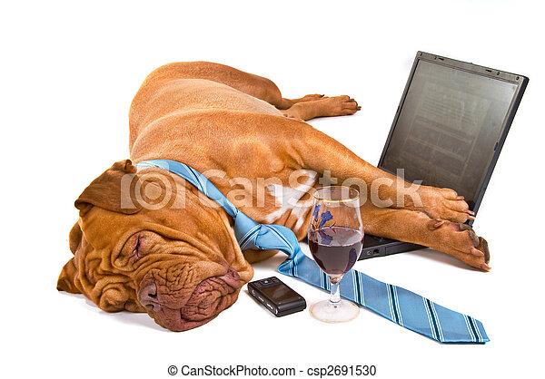 Hardworker Fell Asleep - csp2691530