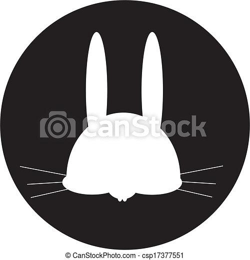 hare - csp17377551