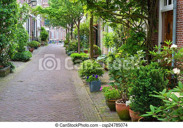Harlem small street - csp24785074