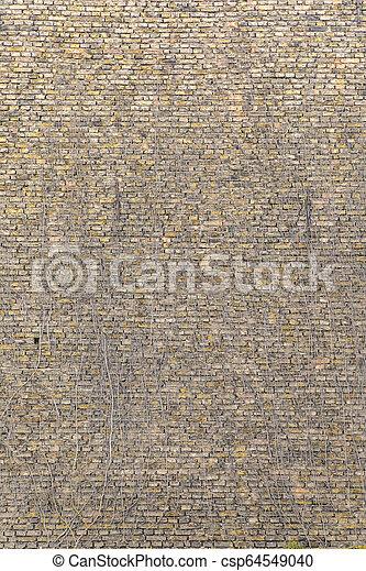 harmonic background of old brick wall - csp64549040