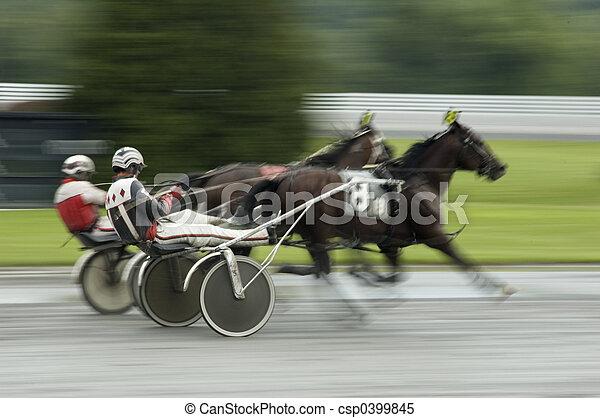 harness race close call - csp0399845