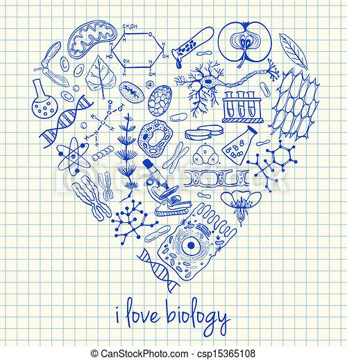 hart gedaante, biologie, werkjes - csp15365108