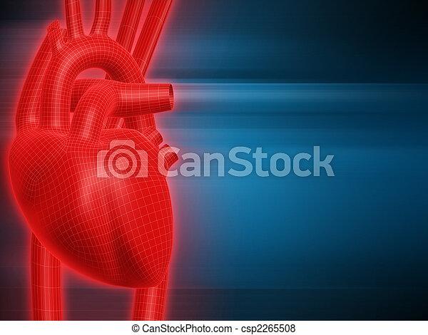 hart, menselijk - csp2265508