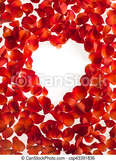 Hart shaped roses petals on white background - csp43391836