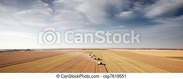 Harvest Aerial Landscape - csp7619551