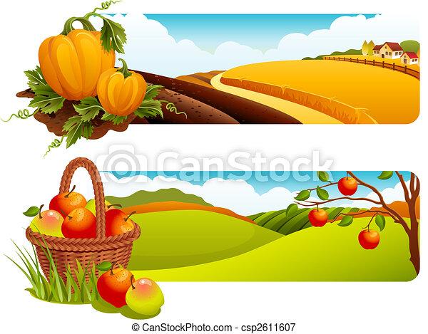 Harvest - csp2611607
