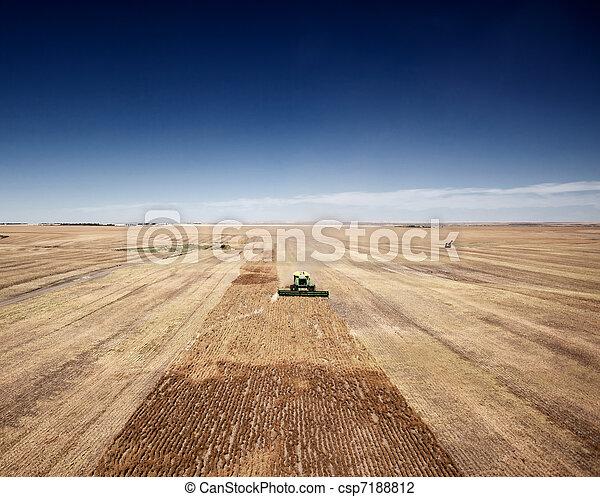 Harvest Landscape - csp7188812