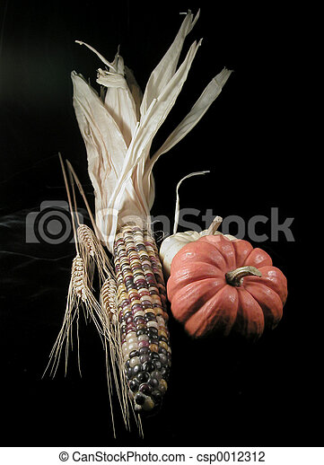 Harvest on Black - csp0012312