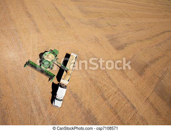 Harvest - csp7108571