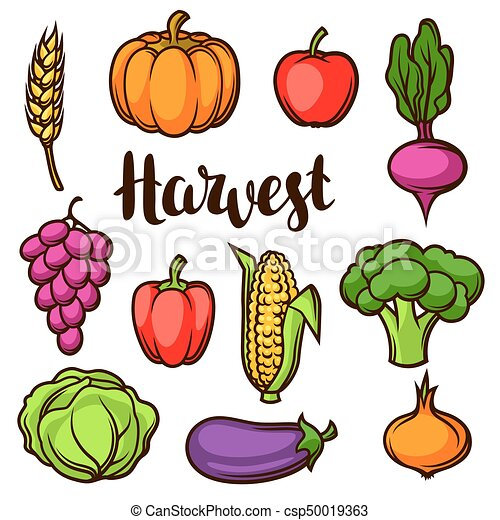 harvest set of fruits and vegetables autumn seasonal clip art rh canstockphoto com free clipart vegetables cartoon free clipart vegetables and fruits