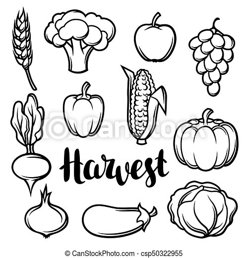 Harvest set of fruits and vegetables. autumn seasonal ...