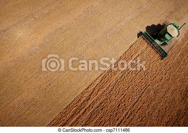 Harvest - csp7111486