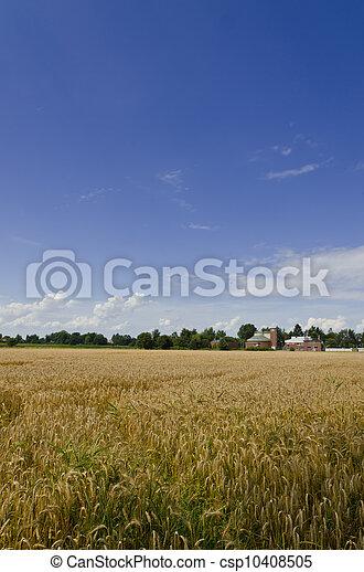 harvest time - csp10408505