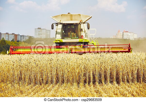 Harvest time - csp29683509