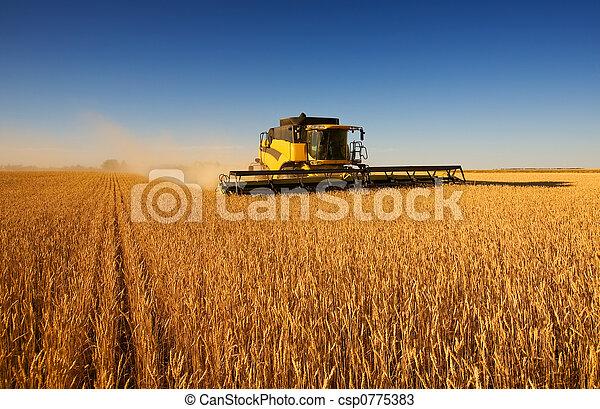 Harvest work - csp0775383