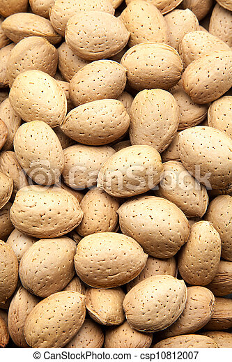 harvested almonds - csp10812007