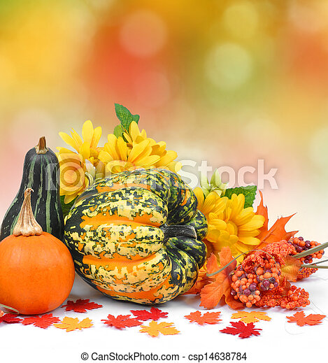 Harvested pumpkins with fall leaves - csp14638784
