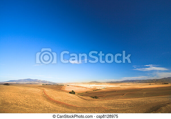 Harvested Wheat Field - csp8128975