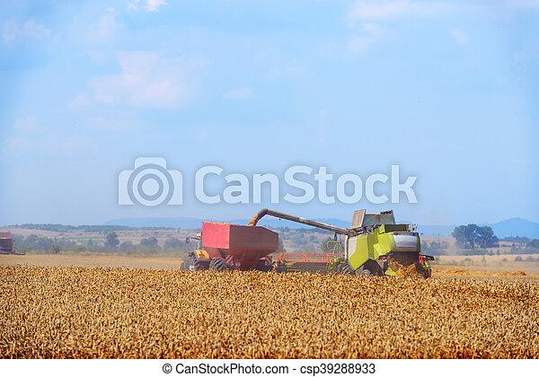Harvester - csp39288933