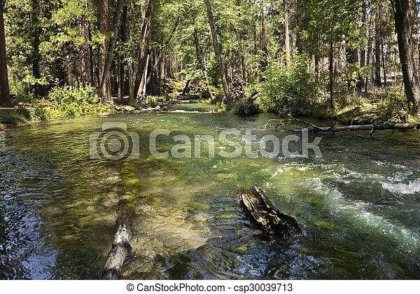 Hat Creek Lassen National Park - csp30039713