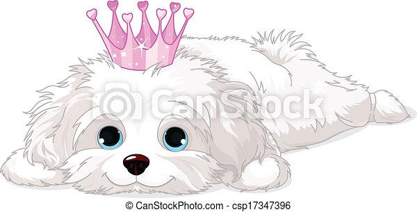 Havanese Puppy with crown - csp17347396