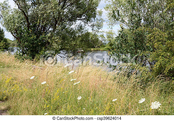 Havel river at summer time (Brandenburg, Germany). meadow. - csp39624014
