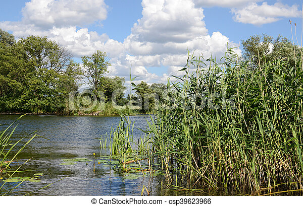Havel river at summer time (Brandenburg, Germany). - csp39623966