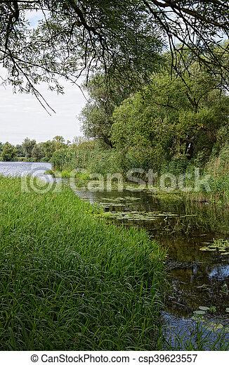 Havel river at summer time (Brandenburg, Germany). - csp39623557