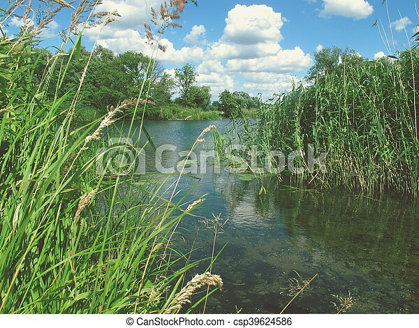 Havel river at summer time - csp39624586