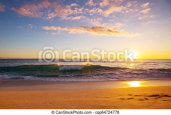 Hawaiian beach - csp64724778