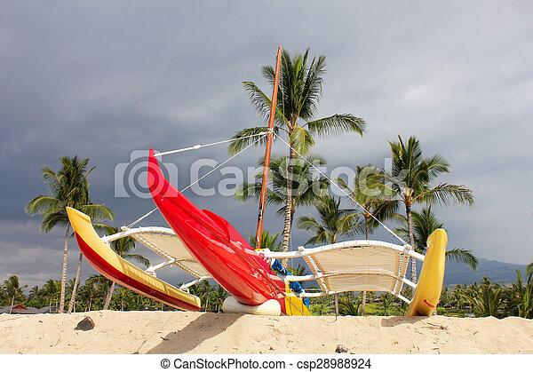 hawaiian beach - csp28988924