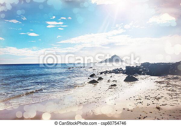 Hawaiian beach - csp60754746