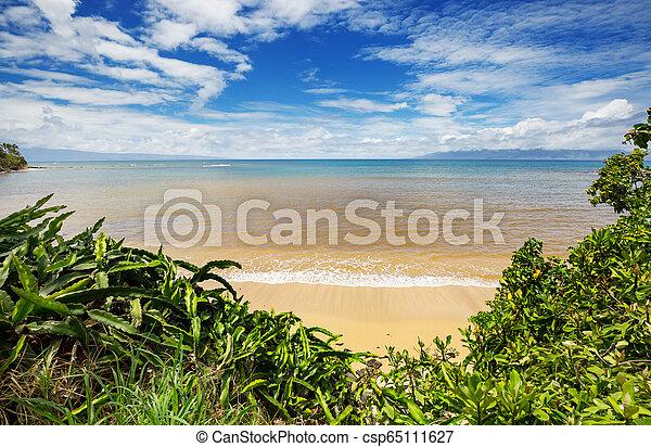 Hawaiian beach - csp65111627