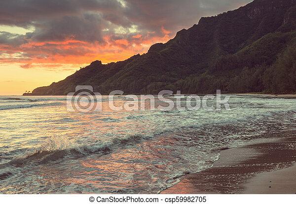 Hawaiian beach - csp59982705