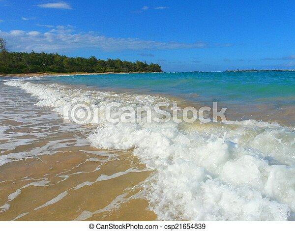hawaiian beach - csp21654839