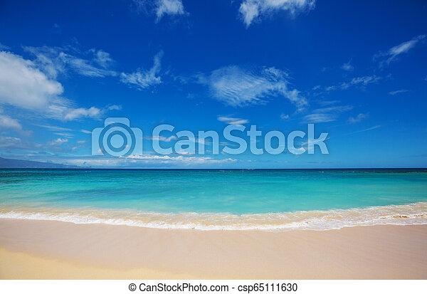 Hawaiian beach - csp65111630