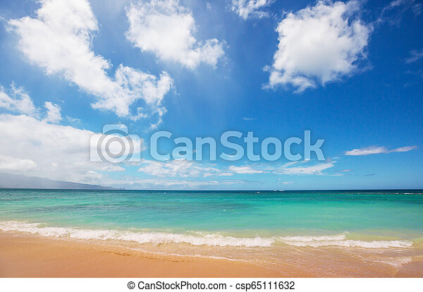 Hawaiian beach - csp65111632