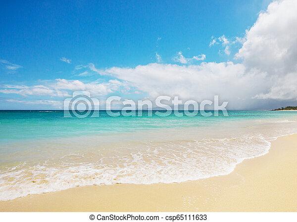 Hawaiian beach - csp65111633