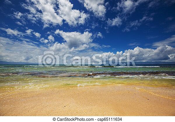 Hawaiian beach - csp65111634