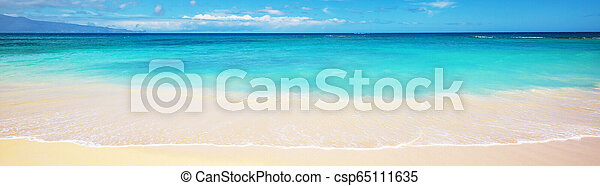 Hawaiian beach - csp65111635