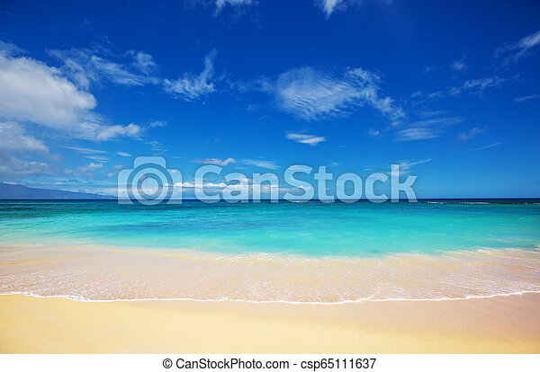 Hawaiian beach - csp65111637